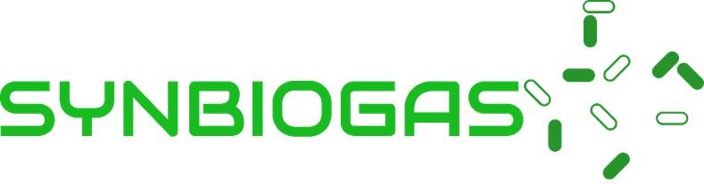 Logo SYNBIOGAS