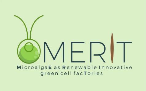 Logo MERIT
